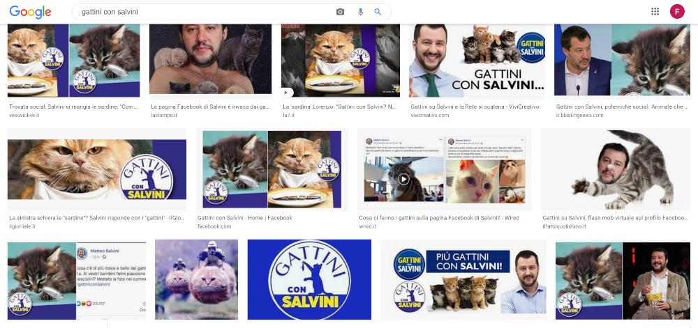 web marketing dei gatti su facebook